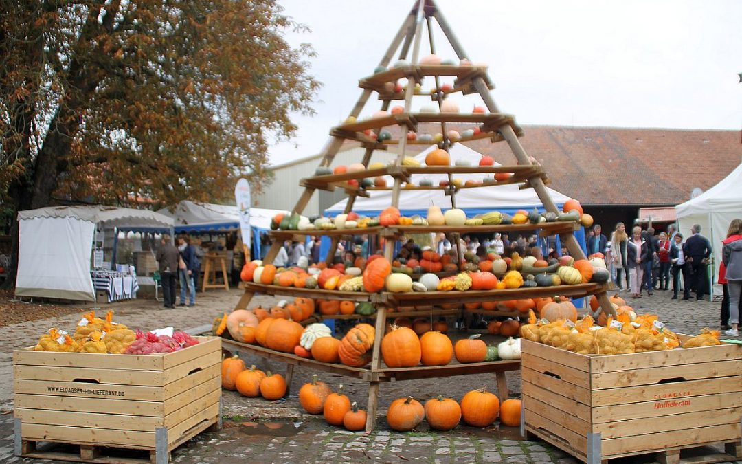 Eldagser Kürbisfest läutet die Herbstzeit ein