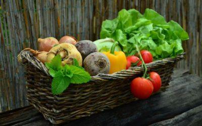 Lecker und gesund – Gemüse gehört dazu