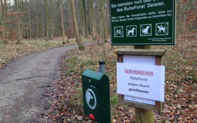 Betreten des Waldes lebensgefährlich